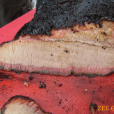 Our smoked beef brisket.